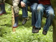 Duizenden scouts overspoelen volgend jaar De Steeg