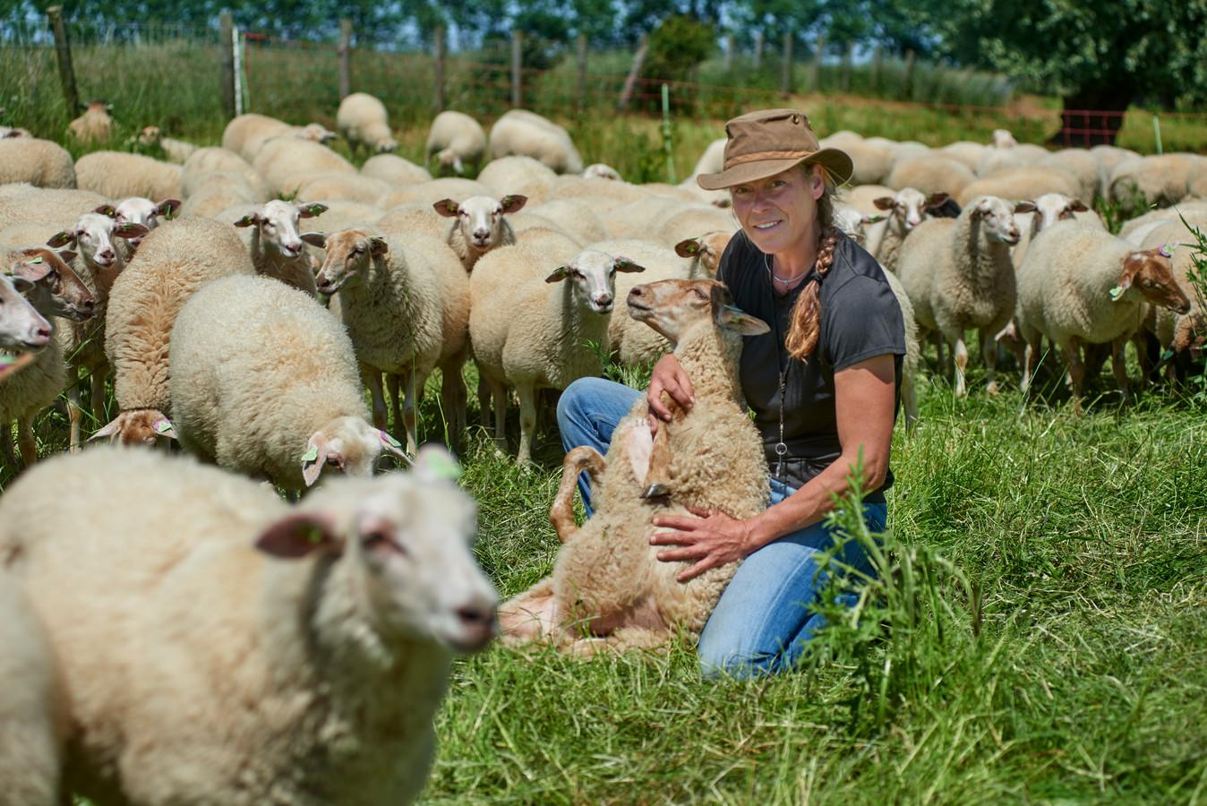 Anneloes Dekker besloot na een depressie haar leven om te gooien en schaapsherdein te worden. Op de foto tussen de schapen te Megen.