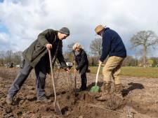 Eerste bomen gepoot op Epische Akkers: 'Met dit project breng je mensen weer samen'
