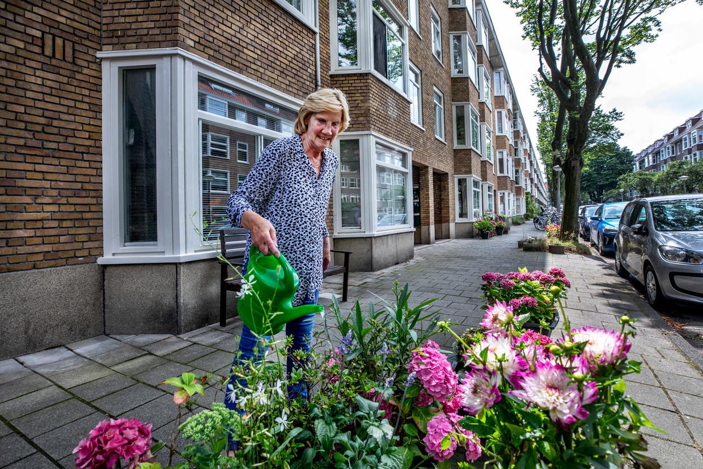 Truus van der Baaren, een van de oudere inwoners van de Walbeeckstraat, woont naast het blokje dure huizen van Blackstone. Beeld Raymond Rutting / de Volkskrant