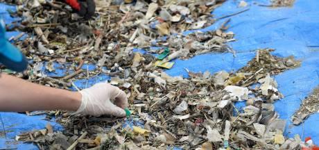 """""""Déchets en mer: les animaux ne savent qu'en faire"""": la nouvelle vidéo du SPF Santé publique"""
