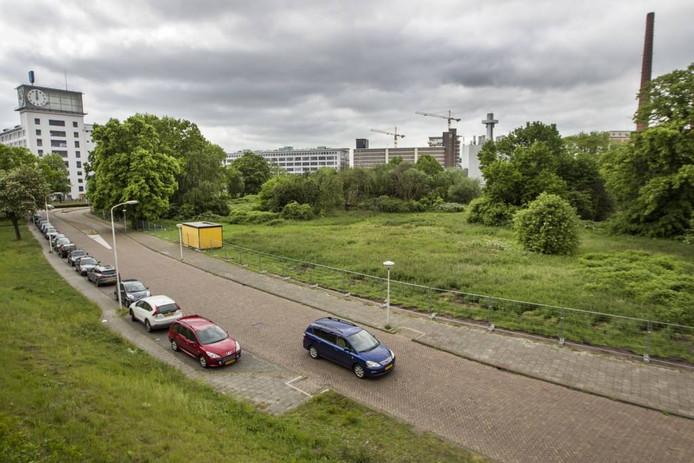Het Gloeilampplantsoen gezien vanaf het spoor. Archieffoto Tom Valstar/fotomeulenhof