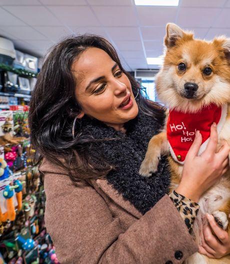 Fikkie in een kerstpakje: kerstartikelen voor dieren vliegen over toonbank