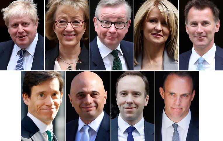 Van links naar rechts: (boven) Boris Johnson, Andrea Leadsom, Michael Gove, Esther McVey, Jeremy Hunt, (onder) Rory Stewart, Sajid Javid, Matt Hancock en Dominic Raab. Mark Harper staat niet op de foto. Beeld AFP