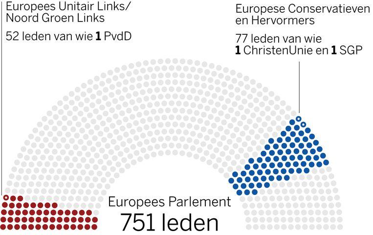 De fracties in het Europees Parlement Beeld Volkskrant