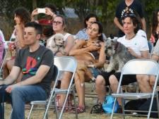 Oren gespitst bij hondenconcert in Sprang-Capelle