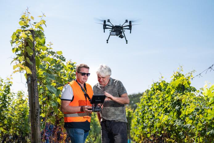 Wijngaard Hof van Twente houdt wijndruiven in de gaten met behulp van een drone. Wijnboer Roelof Visscher en dronepiloot Wouter Borre.