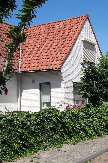 Wie helpt? Watersnoodhuisjes gezocht in West Maas en Waal en Druten