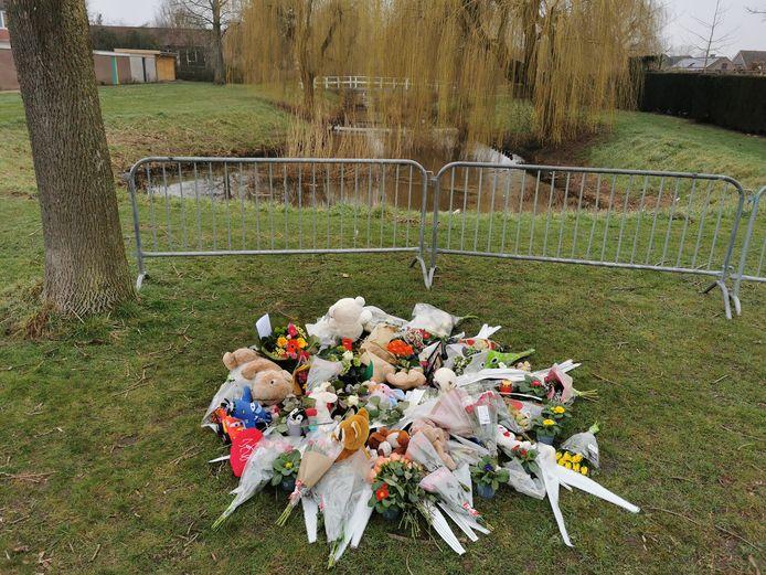 Veel bloemen en knuffels voor het verdronken zesjarige jongetje in Sas van Gent.