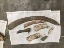 Opnieuw bijzondere prehistorische vondsten bij graafwerk Nieuwe Sluis Terneuzen