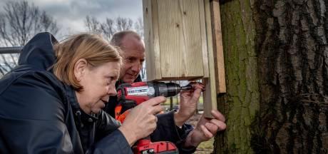 Kool- en Pimpelmezenkasten in de strijd tegen de eikenprocessierups in Steenbergen