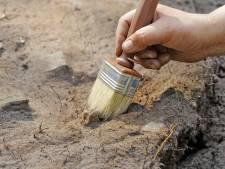 Dwangsom kweker van tafel, Zaltbommel moet terp exact meten