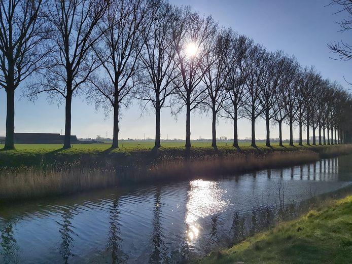 Het Schipdonkkanaal in Zomergem.