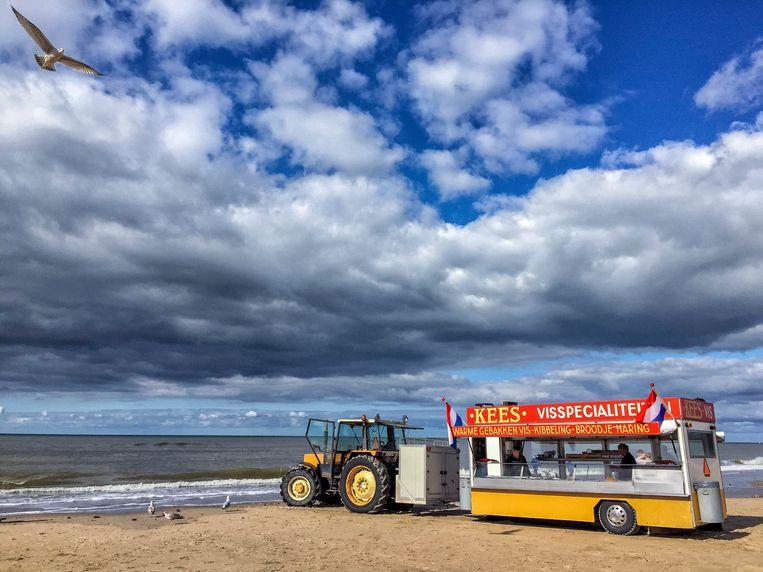 Kibbeling en haring uit eigen zee, een echte Nederlandse traditie Beeld Dolph Cantrijn, HH