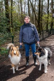 Hek om natuur in Vaassen te beschermen wekt woede bij omwonenden: 'Deze man kent de geschiedenis niet'