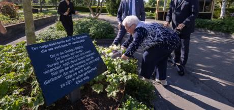 CDA wil met 'boom van hoop' mensen die aan corona overleden herdenken