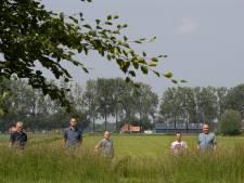 Boeren verbijsterd om plan voor zonneveld aan Oude Steeg: 'Panelen op landbouwgrond. Onbegrijpelijk'