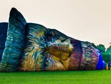 Reuzenhoofd Van Gogh exclusieve blikvanger tijdens ballonfestival