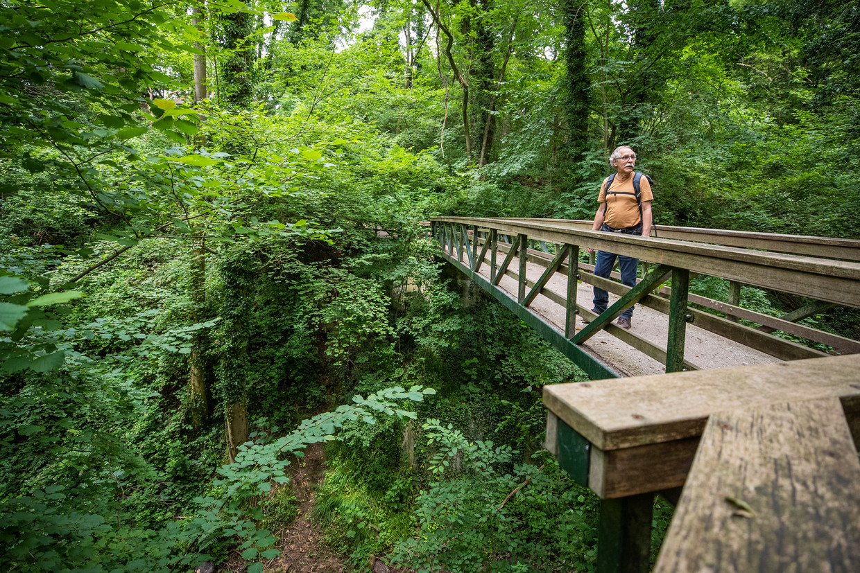 Freek van Westreenen in het Savelsbos in Zuid-Limburg