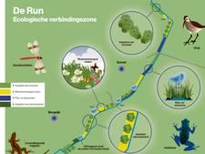 Ruim baan voor parelmoervlinder, bandheidelibel en wulp in Bergeijk en Eersel