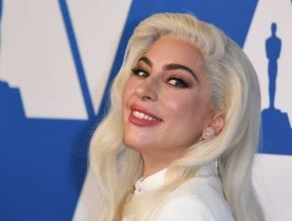 Hondendieven van Lady Gaga hadden het vermoedelijk niet gemunt op de hondjes van de zangeres