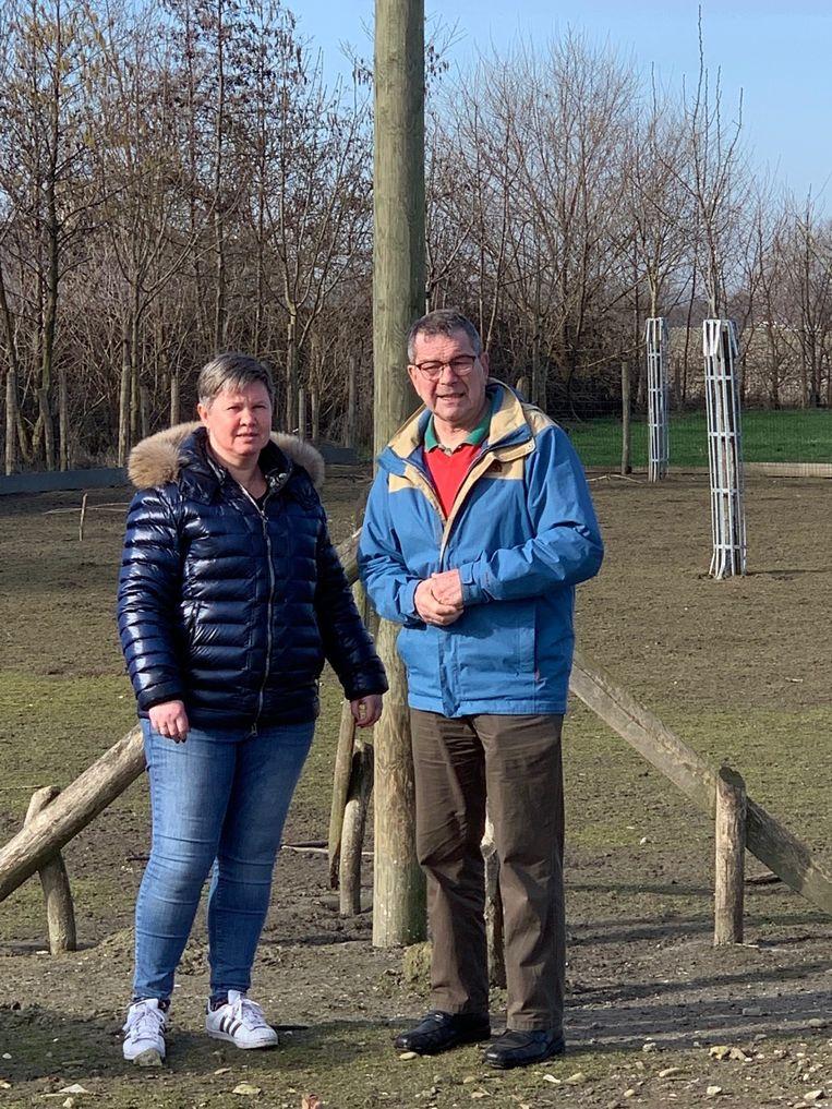 Willy Vanlandschoot bouwt nestpalen voor ooievaars.