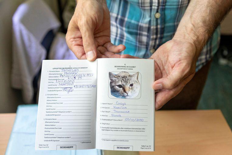 Tamerlan Muasev wil zijn kat Gusya niet meer alleen laten. Beeld Marco Okhuizen