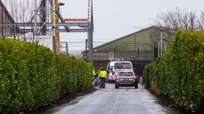 Arbeider sterft bij dakwerken op werf in Wetteren