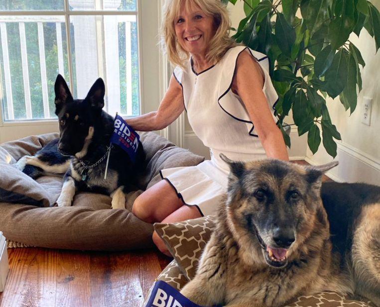 Jill Biden met de First Dogs: Champ en Major. Beeld Twitter
