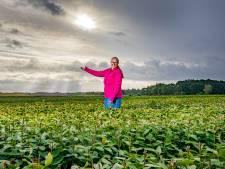 Verzet tegen landbouwgif in Oost-Nederland groeit, maar pas als je er dood aan gaat wordt het verboden