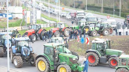 VIDEO. Boze landbouwers blokkeren rotonde op N60 in Leupegem uit protest tegen Mestactieplan 6