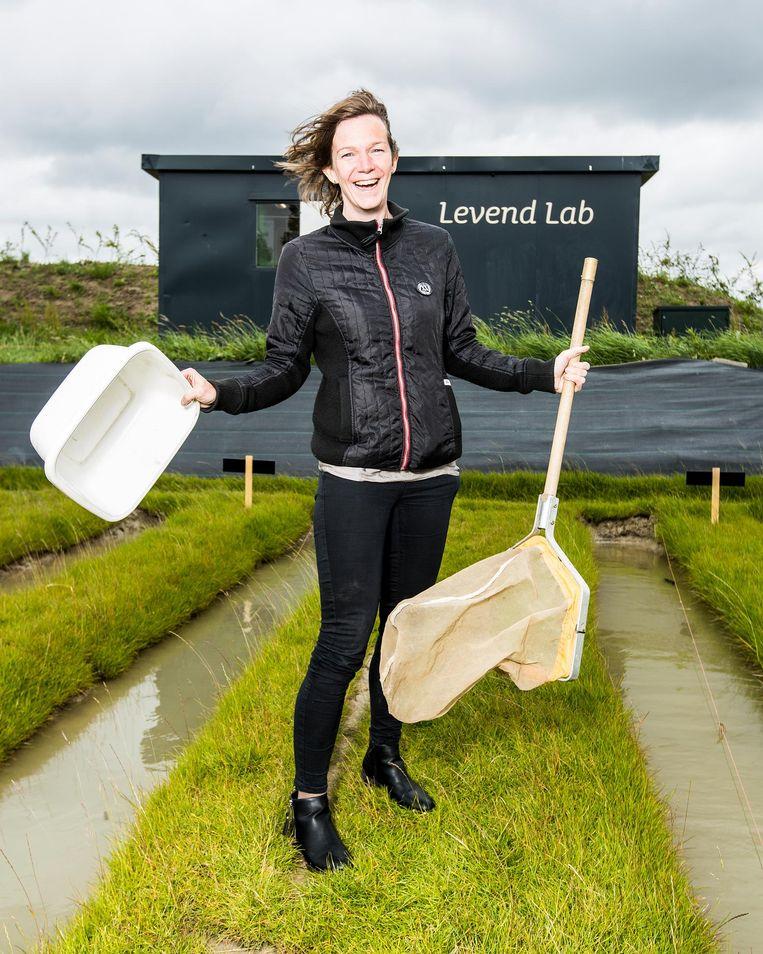 Ecotoxicologe Martina Vijver: net te laat. Beeld Jiri Buller / de Volkskrant