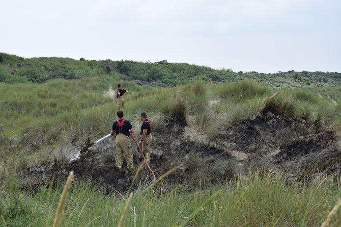 Een relatief klein deel van de duinen in Ellemeet brandde vanmiddag uit.