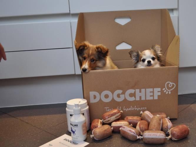 """Deliveroo voor uw hond: Belgisch bedrijf levert verse maaltijden aan huis. """"Maar toch"""", zegt de dierenarts, """"is er niks beter dan hondenbrokken"""""""
