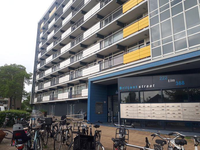 Op de derde verdieping van de Briljantflat werd vrijdagavond iemand aangehouden na het schieten met een alarmpistool.