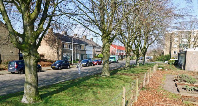 De Gerard Doustraat in de wijk Westrand van Roosendaal, waar lijsttrekker Jesse Klaver van Groen Links opgroeide.