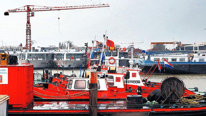 Een motorbootje, sleepboten en cruiseschepen. Het is passen en meten in de haven.