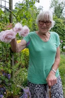 'De kleur van de tuin verandert elke dag, dat is het mooie'