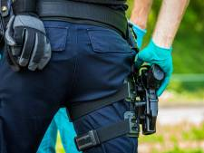 Agent schiet agressieve hond neer in 's-Heerenberg,  'Mastino' overleeft het niet