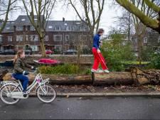 Alleen hardlopen vindt Willem-Paul saai, dus loopt hij over bomen: 'Het liefst met mijn ogen dicht'