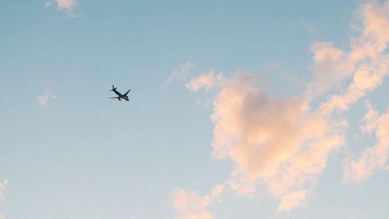 Zoals vogels vliegen over rouwen na MH17 Beeld Getty Images