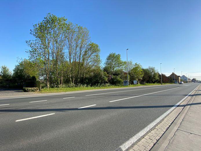 Langs de Gentseweg in Sint-Eloois-Vijve kwam het tot een botsing tussen een auto en de bromfietser.