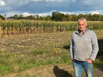 """Landbouwer vindt tijdens oogsten van voedermaïs massa drankblikken: """"Hele winter bang afwachten dat mijn dieren dit niet opeten"""""""