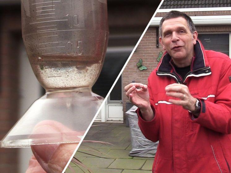 Brabantse amateurweerman als een kind zo blij met mogelijke sneeuwval: 'Frustrerend als het niet valt'