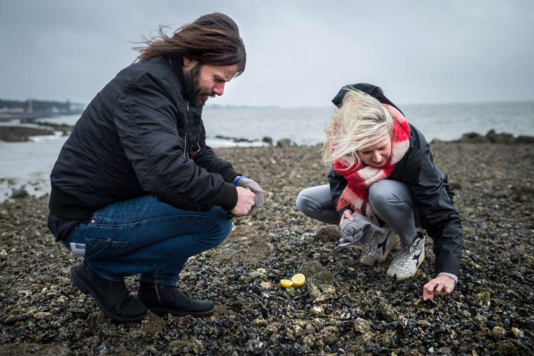 Met goede vriend Bojan Bajic op het strand. De Servische vluchteling vond een nieuwe thuis <br />op het eiland. 'Hier vergeet ik al mijn kwade zorgen.' Beeld Kees van de Veen