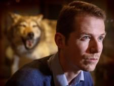 De Hoge Veluwe mag wolf niet zomaar buiten het hek zetten: 'Park heeft een lastig verhaal'