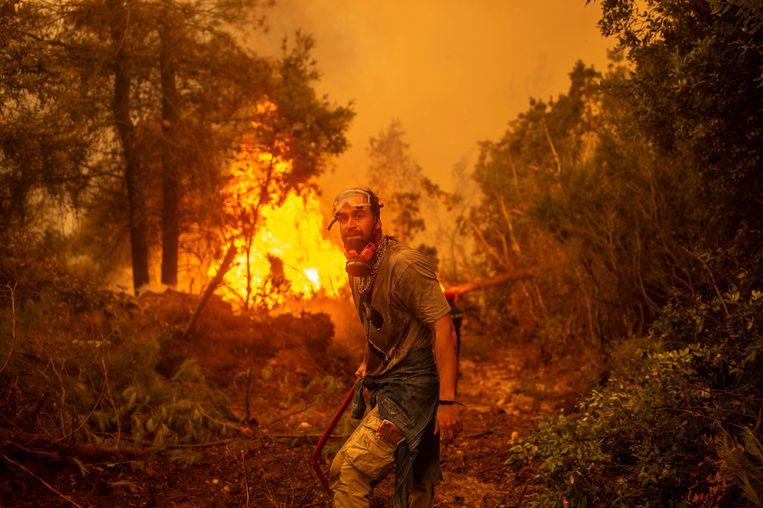 Inferno op het Griekse eiland Evia. Beeld AFP