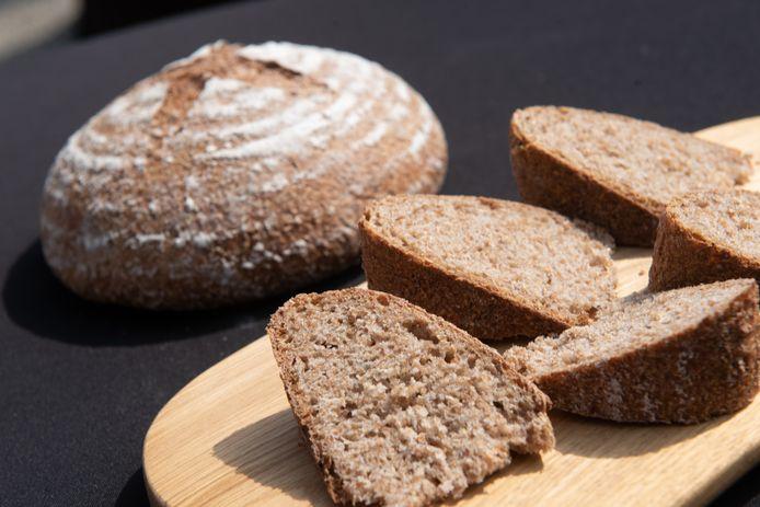 Het Belgisch Korenbrood zal in heel Vlaanderen te koop zijn.