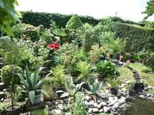 Groei en Bloei zoekt deelnemers Open Tuinen Weekend
