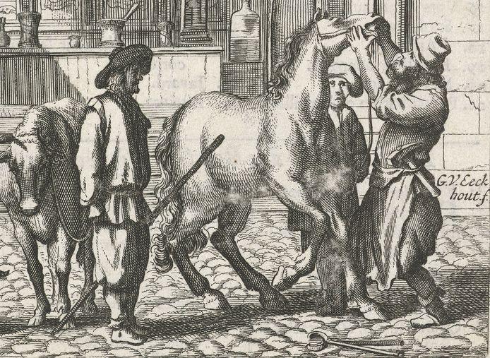 Bij de illustratie: Een man kijkt in de bek van een paard. Illustratie uit een boek over het landleven. Ets van Gerbrand van den Eeckhout 1621-1674). Bron: Rijksmuseum Amsterdam